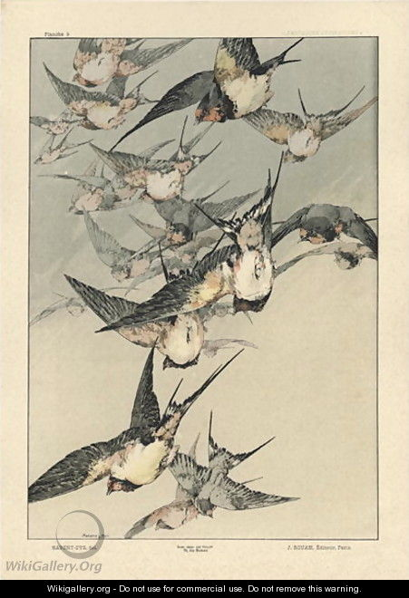Birds plate 5 from Fantaisies decoratives - (after) Habert-Dys, Jules-Auguste