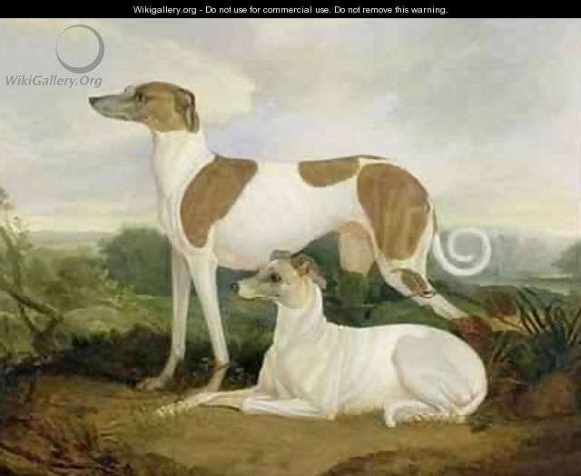 Two Greyhounds in a Landscape - Charles Hancock