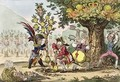 The New Dynasty or The Little Corsican Gardiner planting a Royal Pippin Tree - James Gillray