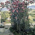 Valley in Umbria - Aleksandr Jakovlevic Golovin