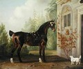 Lord Abergavennys Dark Bay Carriage Horse with a Terrier - Thomas Gooch