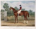 Elis the Winner of the Great St Leger Stakes at Doncaster - (after) Herring Snr, John Frederick