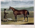 Mameluke the Winner of the Derby Stakes at Epsom - (after) Herring Snr, John Frederick
