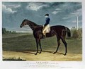 Cadland the Winner of the Derby Stakes at Epsom - (after) Herring Snr, John Frederick