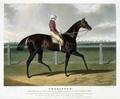 Chorister the Winner of the Great St Leger Stakes at Doncaster - (after) Herring Snr, John Frederick