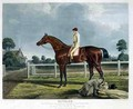 Reveller the Winner of the Great St Leger at Doncaster - (after) Herring Snr, John Frederick