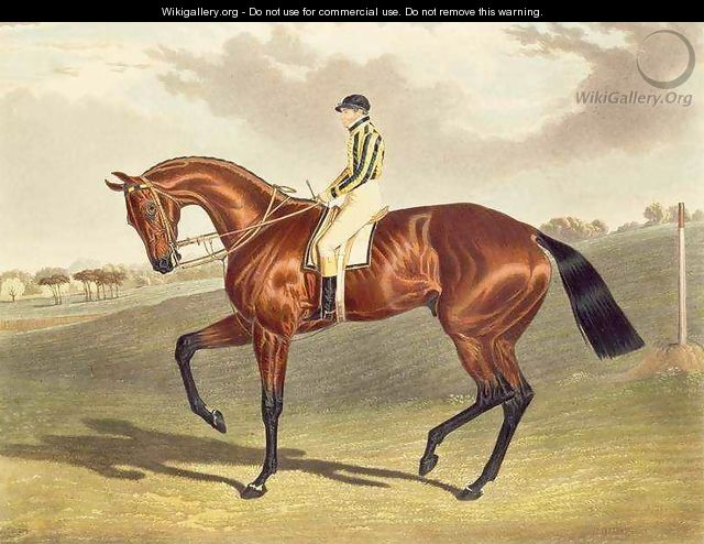 Bay Middleton winner of the Derby in 1836 - (after) Herring Snr, John Frederick