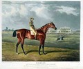 Memnon the Winner of the Great St Leger at Doncaster - (after) Herring Snr, John Frederick