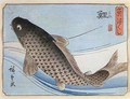 A Carp from Small Fishes Series - Utagawa or Ando Hiroshige