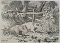 Cattle Resting - Robert Hills
