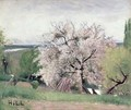 Fruit Tree in Blossom Bois le Roi - Carl Fredrik Hill