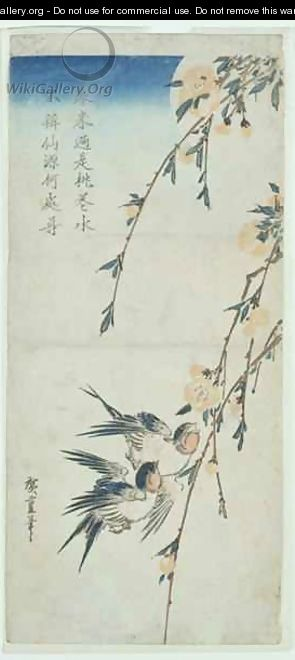 Swallows and Peach Blossom in Moonlight - Utagawa or Ando Hiroshige