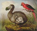Dodo and Red Parakeet - William Hodges