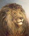 A Lions Head - Heywood Hardy