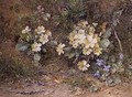 Primroses and Violets on a mossy bank - John Jessop Hardwick
