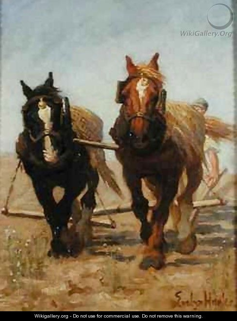 The Ploughing Team Sussex Downs - Evelyn Harke