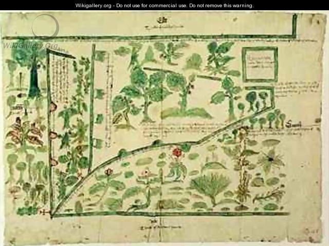 Map Showing Part Of The Manor Of Shawe Berkshire England John
