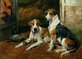 Hounds in a Stable Interior - John Emms