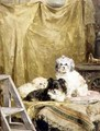 Three Dogs - Charles van den Eycken