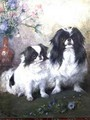 A Japanese Chin Bitch and her Puppy - Frances C. Fairman