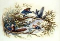 Goblins and Squirrels - Richard Doyle