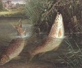 Trout at Winchester - Valentine Thomas Garland