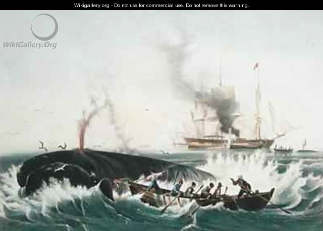 Attacking a Right Whale and Cutting In from The Whale Fishery - (after) Garneray, Louis Ambroise