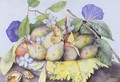 Still life with Plums Walnuts and Jasmine - Giovanna Garzoni