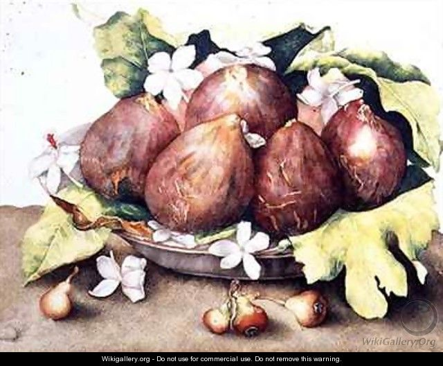 Figs on Leaves - Giovanna Garzoni