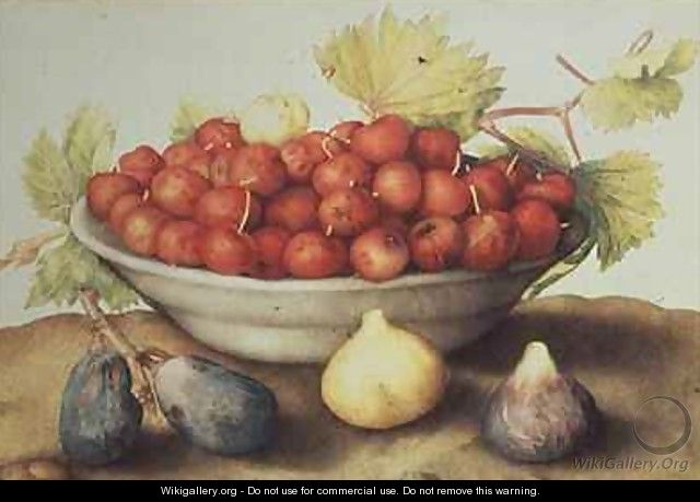A Bowl of Cherries and Figs - Giovanna Garzoni