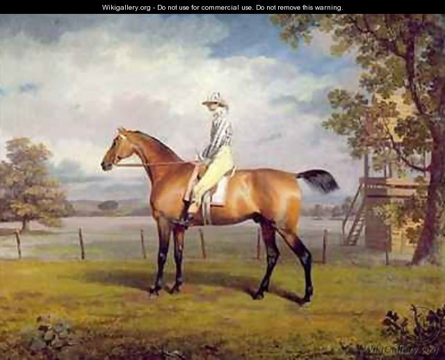 The Duke of Hamiltons Disguise with Jockey Up - George Garrard