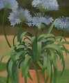Agapanthus - Mark Gertler