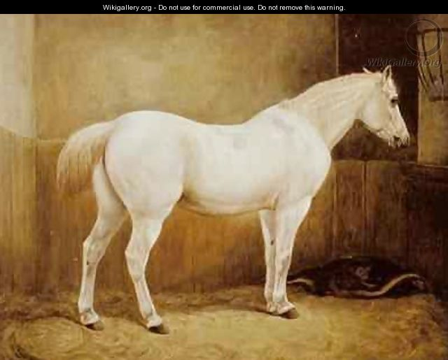 White Horse in a Stable - Geymuller