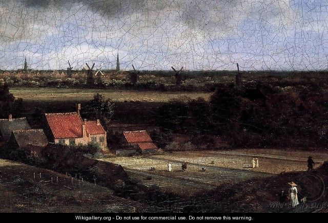 Landscape with a View of Haarlem (detail) - Jacob Van Ruisdael