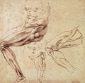 Three Studies of a Leg - Michelangelo Buonarroti