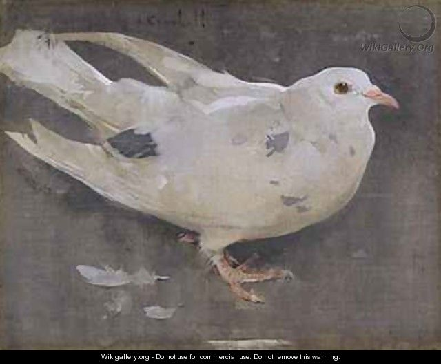The Pigeon - Joseph Crawhall