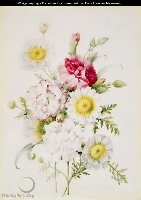 Bunch of Mixed Carnations and White Marigolds, 1839 - Pierre-Joseph Redouté