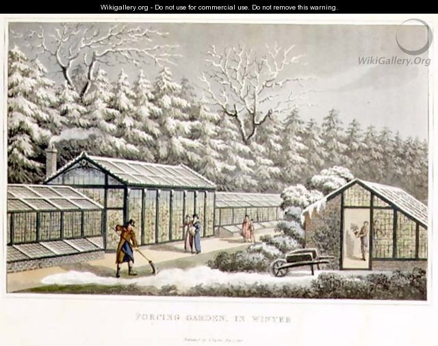 Forcing Garden in Winter, from Fragments on the Theory and Practice of Landscape Gardening, pub. 1816 - Humphry Repton