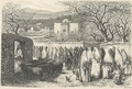 Marabout and Procession: Tlemcen, engraved by Henri Theophile Hildibrand 1824-97 - Edouard Riou