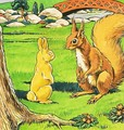 Little Red Squirrel 15 - Harry M. Pettit