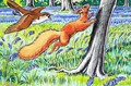 Little Red Squirrel 13 - Harry M. Pettit