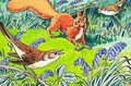 Little Red Squirrel 9 - Harry M. Pettit