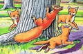 Little Red Squirrel 6 - Harry M. Pettit