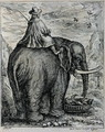 Riding an Elephant, from Elephantographia curiosa by G.C. Petri von Hartenfels, 1723 - Jacob Petrus