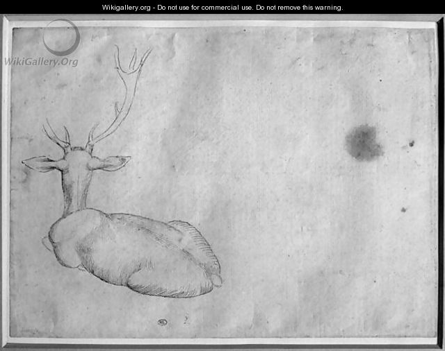 Resting stag, seen from behind, from the The Vallardi Album - Antonio Pisano (Pisanello)
