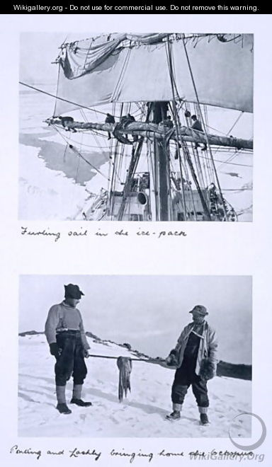 Top Furling Terra Novas sail in the ice pack. Bottom Ponting and Lashly bringing home the octopus. from Scotts Last Expedition - Herbert Ponting
