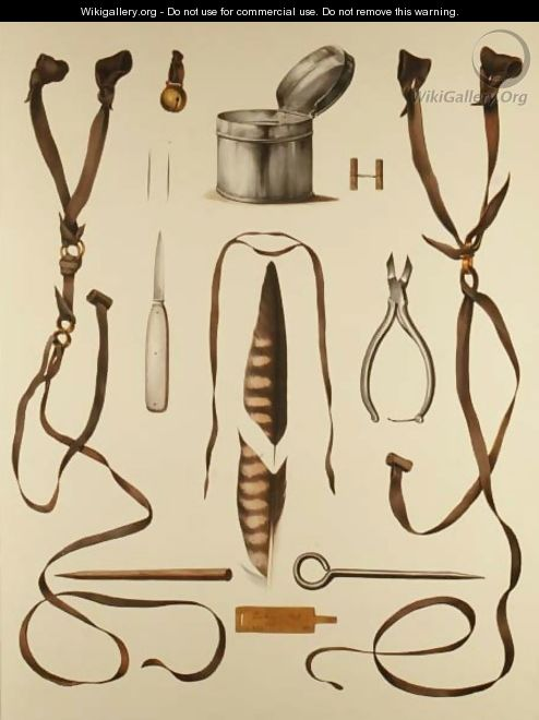 Equipment for Falconry, from Traite de Fauconnerie by H. Schlegel and A.H. Verster de Wulverhorst, 1844-53 2 - Wouw Portman & Van