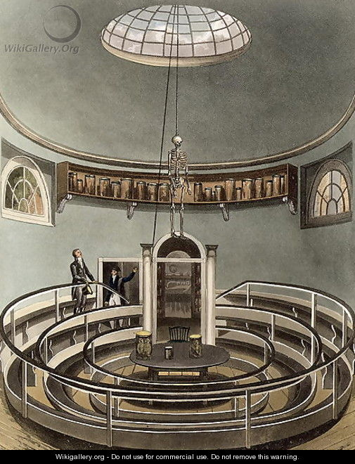 Interior Of The Theatre Of Anatomy Cambridge From The History Of