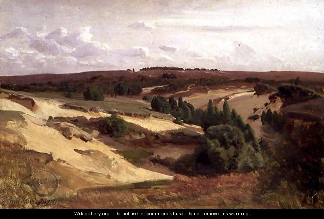 The heath near Bispingen, 1887 - Valentin Ruths