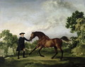 The Duke of Ancasters bay stallion Blank, held by a groom, c.1762-5 - George Stubbs
